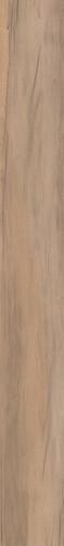 Abk Dolphin Clay Rett 20x170 см